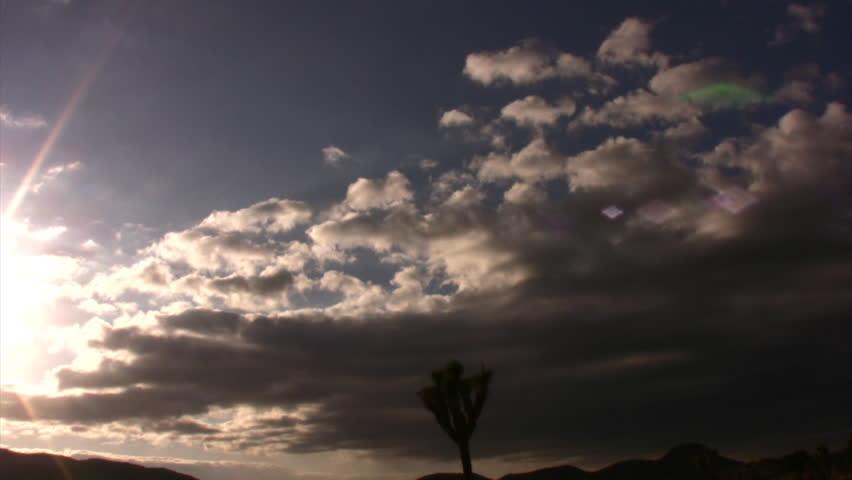 Joshua Tree Sunset 05 Time Lapse 5x California USA #1343302