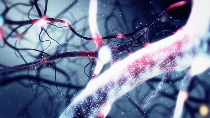Real Neuron synapse network with red electric impulse activity 3D animation. Infinite Loop inside the human brain. | Shutterstock HD Video #13460132