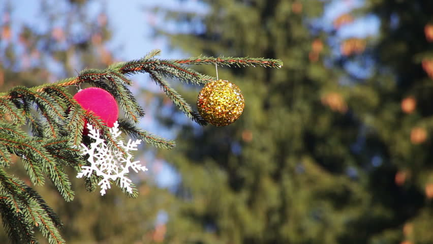 Beautiful, big, tall, decorated Christmas tree with Christmas toys, balls, garlands and various ornaments stands on the street on a background of blue sky and forest. | Shutterstock HD Video #13541276