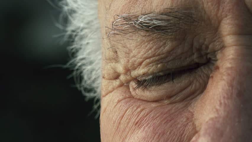 Elderly wrinkled man half face portrait: closeup on old man's eye | Shutterstock HD Video #13549556
