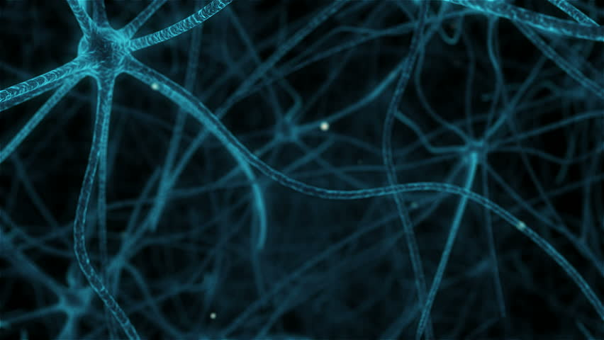 Animation of travelling through neurons in human brain #13556225