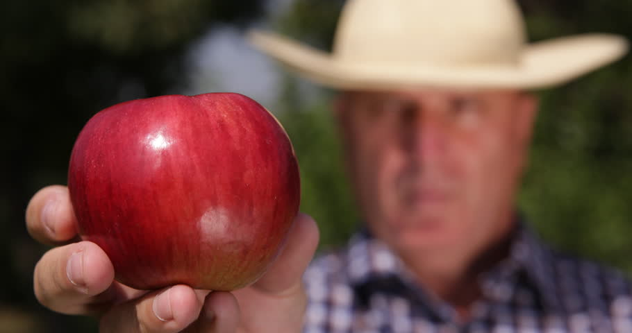 Farmer Recommend Healthy Dessert Vitamins Nutritious Close Up Apple Fruit View