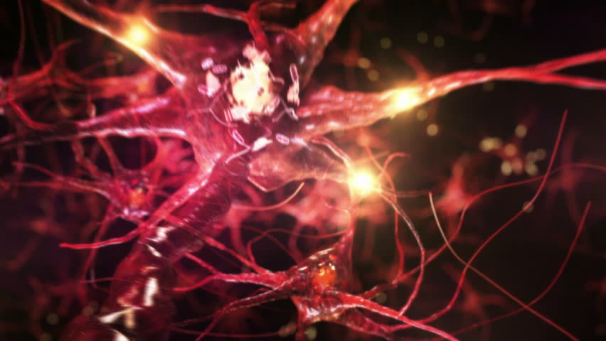 Journey through a neuron cell network inside the brain. Red. Loopable. Flying across a neuronal network, electric impulses passes by it. Synapse. Royalty-Free Stock Footage #13809131