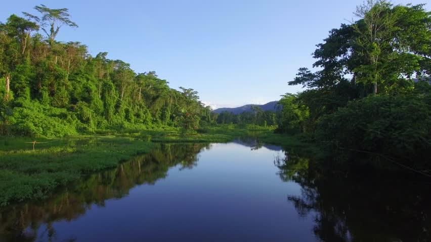 Flight over amazon rain forest at sunset