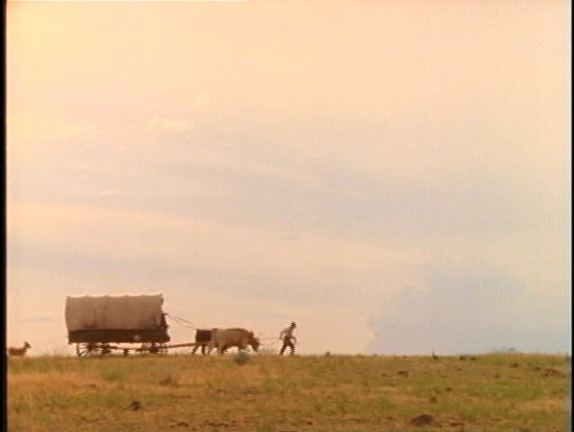 Pioneers walk with livestock and covered wagons across a prairie.