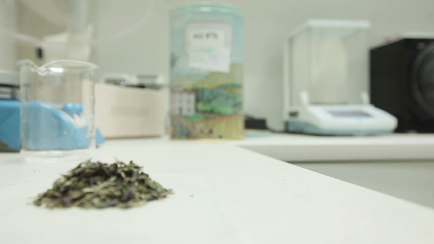 Edited videos about medicine and herbal medicine. Detail of a medicinal plant while in the background a pharmacist continues to work. Pharmaceutical preparation, herbal tea, medicinal plants,