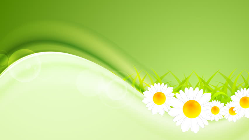 Summer wavy motion design with camomiles and grass. Video animation HD 1920x1080 | Shutterstock HD Video #14409469