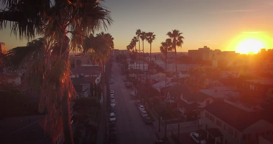 Aerial view of city of Los Angeles cityscape and palm trees at sunset. 4K UHD.