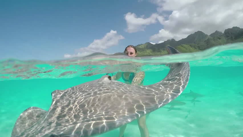 SLOW MOTION CLOSE UP UNDERWATER: Excited young woman on vacation having stingray encounter with friendly rays | Shutterstock HD Video #14845657