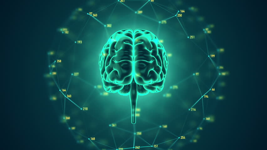 Abstract background with animation of rotation Human brain with net of data from numbers around. Backdrop of science or social technology. Animation of seamless loop. | Shutterstock HD Video #14884936