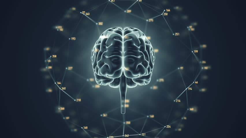 Abstract background with animation of rotation Human brain with net of data from numbers around. Backdrop of science or social technology. Animation of seamless loop. | Shutterstock HD Video #14884948