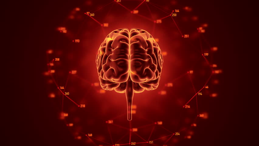 Abstract background with animation of rotation Human brain with net of data from numbers around. Backdrop of science or social technology. Animation of seamless loop. | Shutterstock HD Video #14884981