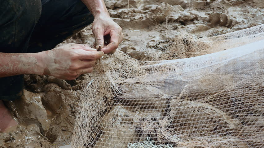 Fisherman removing enmeshed fish from his net and keeping it in a plastic bag ( close up) | Shutterstock HD Video #14991427