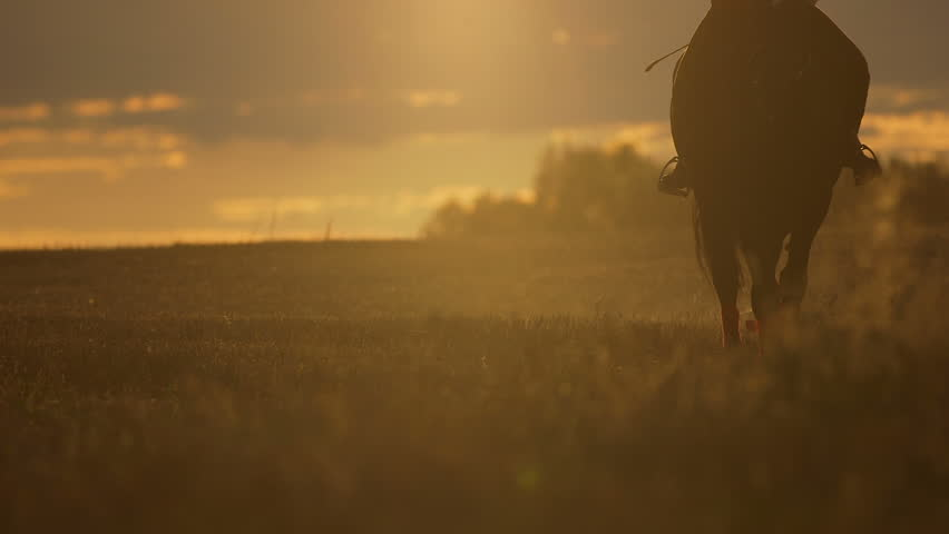 Lockdown shot of woman riding horse in nature. Female is enjoying horseback riding on field during sunset. She is with domestic animal against orange sky.  | Shutterstock HD Video #15149695
