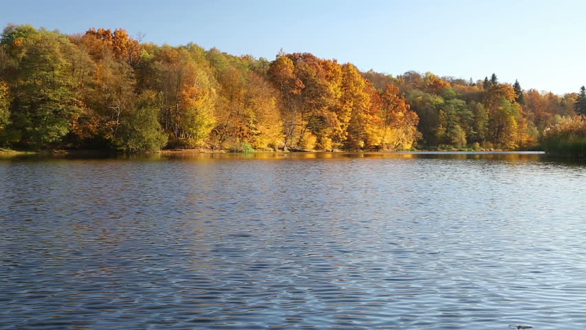 Beautiful autumn landscape on the river | Shutterstock HD Video #15177907