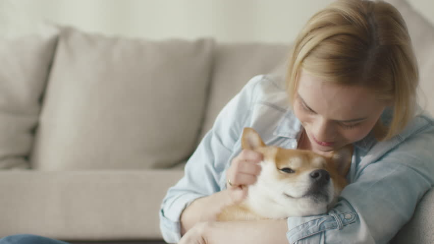 Happy blond woman is playing with pet dog at home next to a sofa. Shot on RED Cinema Camera in 4K (UHD). | Shutterstock HD Video #15396019