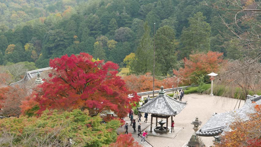 KYOTO, JAPAN -NOV 22, 2015: Tourists at Yoshimine-dera temple in autumn. Yoshiminedera is the twentieth temple on the Kansai Kannon Pilgrimage. | Shutterstock HD Video #15421861