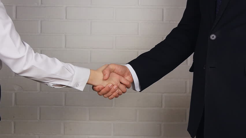 Clouse-up of businessman and  businesswoman shaking hands #15553321