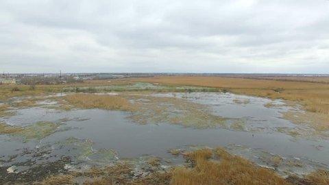 swampy area. low flight over the marsh
