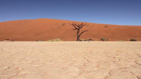 Tracking shot of Namib desert, Sossusvlei