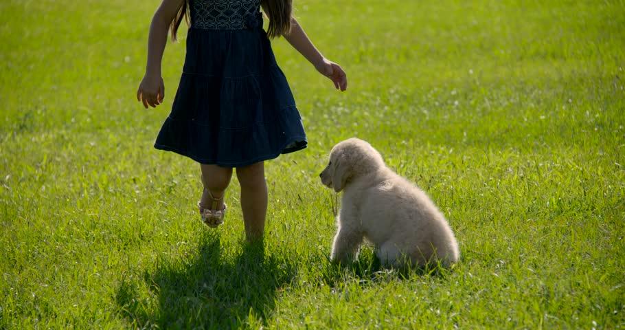 Pet with children Dog | Shutterstock HD Video #15871135