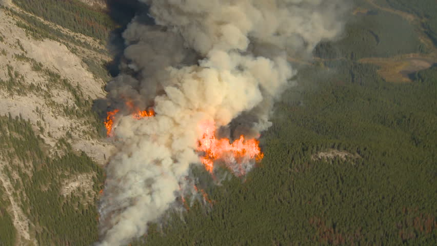 Forest fire big flames aerial spectacular | Shutterstock HD Video #1588807