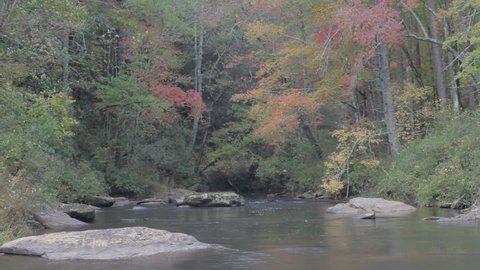 autumn view of Chauga river in South Carolina with falling autumn leaves on a windy day