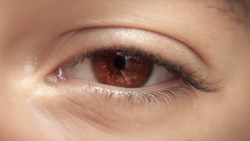 Zoom through eye, optic nerve into brain / neurons. Brown eye. Loopable 4K.  #15992917