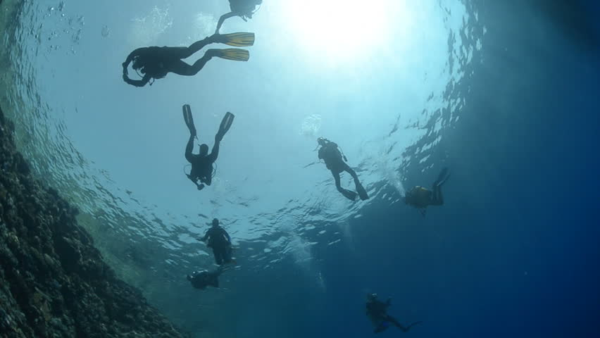 Silhouette of a group of scuba divers close to a calm ocean surface. | Shutterstock HD Video #1613623