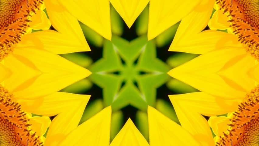 Kaleidoscope flower  | Shutterstock HD Video #16200676