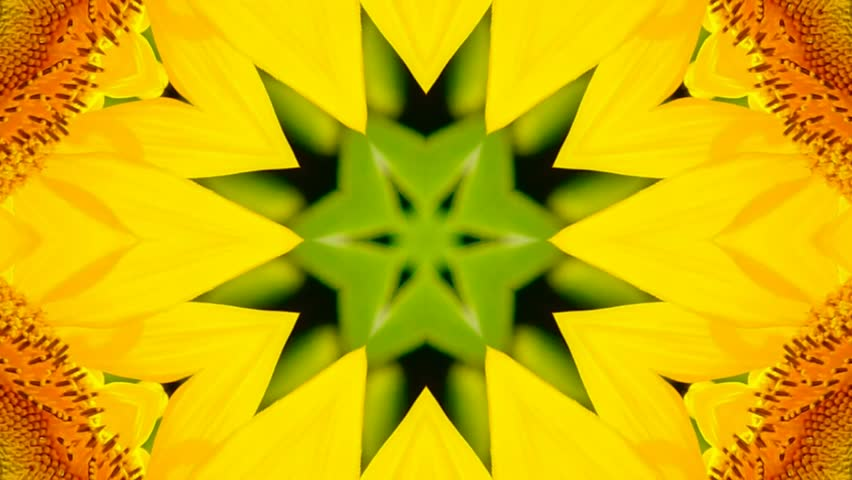 kaleidoscope flower  #16200676