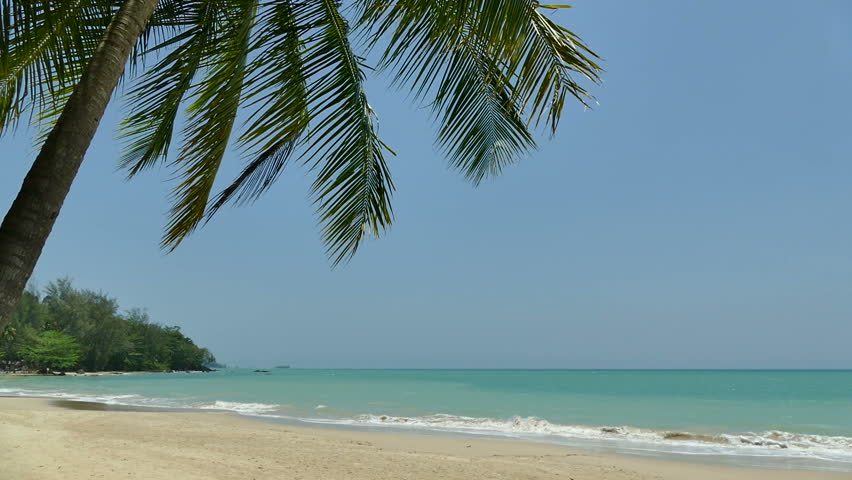 Tropical beach and sea for vacation background   Shutterstock HD Video #16445011