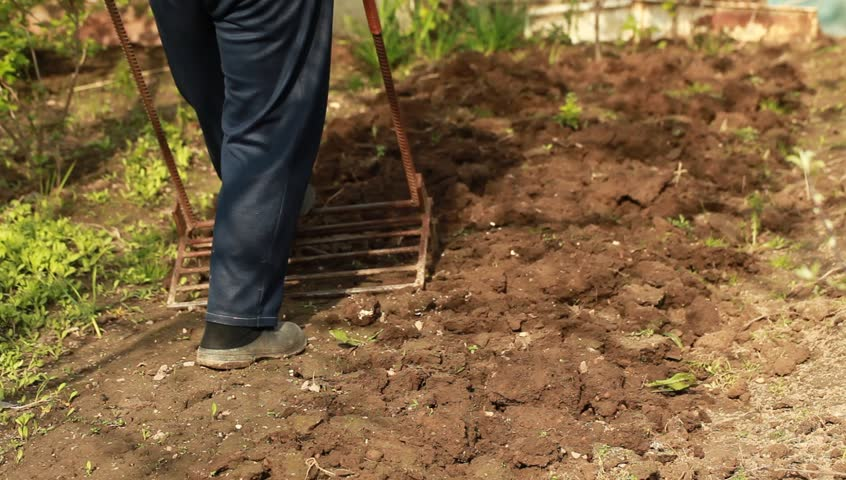 Shovel digging garden miracle   Shutterstock HD Video #16485223
