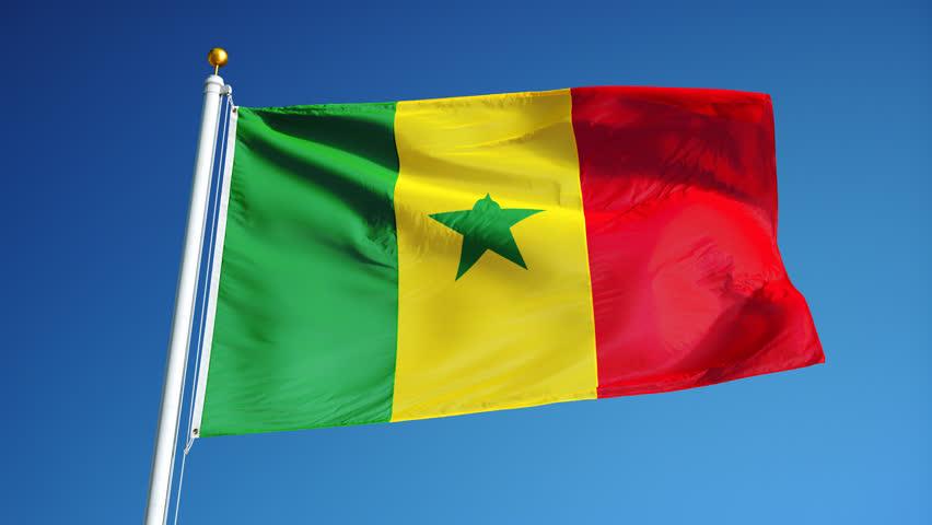 румынский флаг фото часто предметы