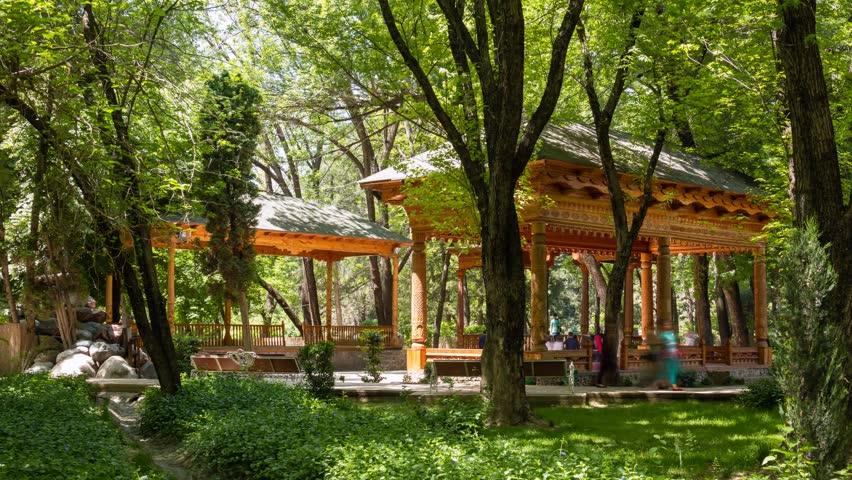 клиника фото город душанбе парк ботанический сад этого года