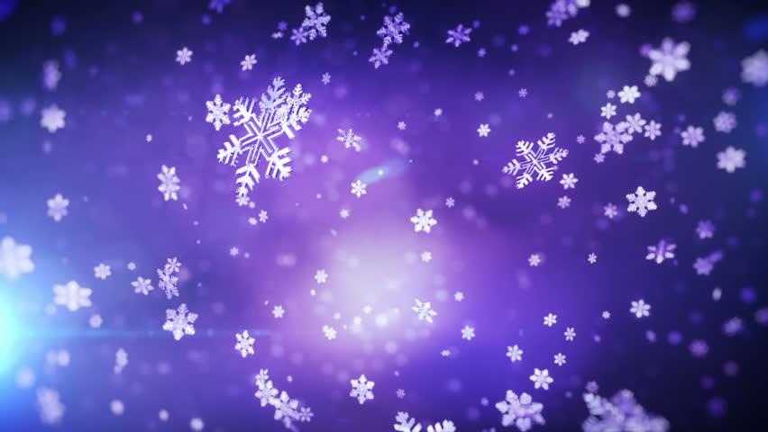 Falling snowflakes. Loop | Shutterstock HD Video #1669921