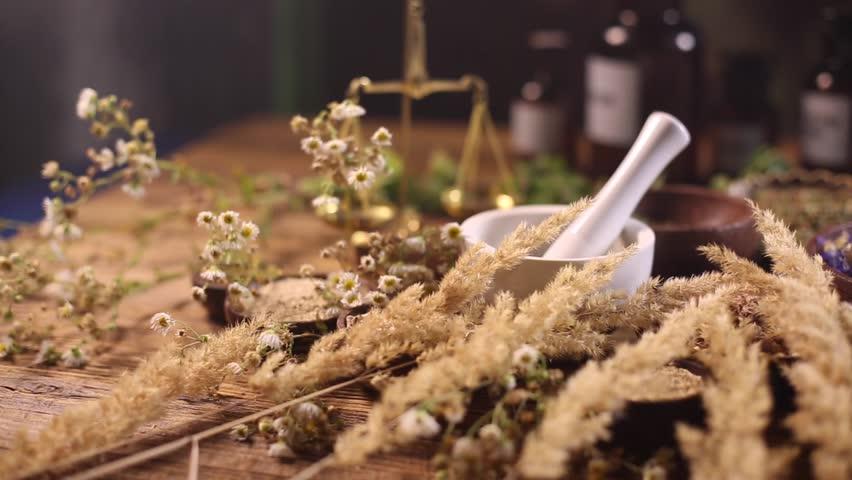 Fresh medicinal herbs on wooden | Shutterstock HD Video #16800415