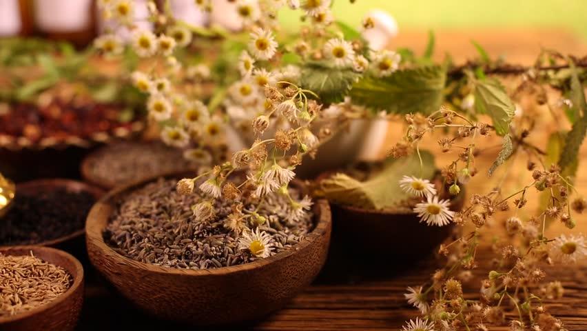 Fresh medicinal herbs on wooden  | Shutterstock HD Video #16801162