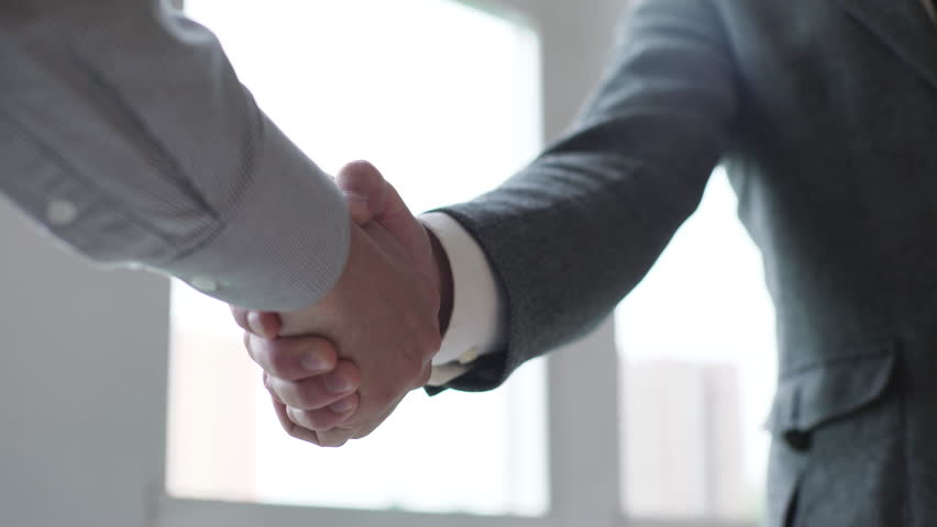 Business partners handshaking #16923535