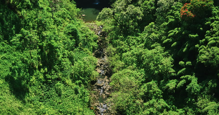 Aerial view flying over amazing waterfall pool in tropical rain forest jungle | Shutterstock HD Video #16941055