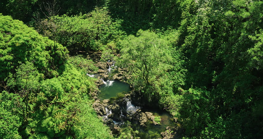 Aerial view flying over amazing waterfall pool in tropical rain forest jungle | Shutterstock HD Video #16941085