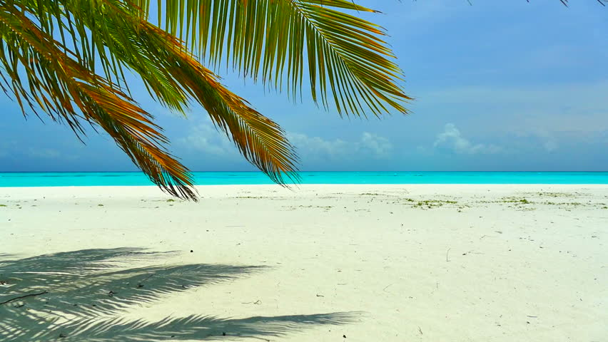 Beautiful tropical beach and sea in maldives island #17096251