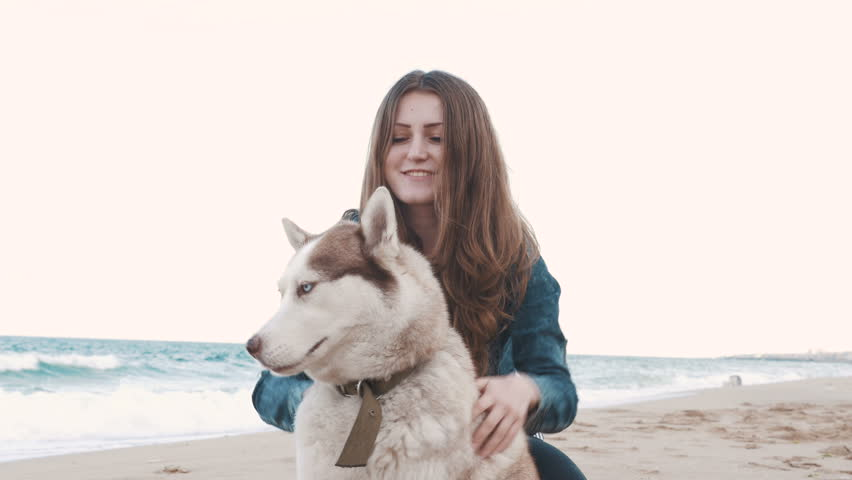 Young attractive girl stroking siberian husky dog...