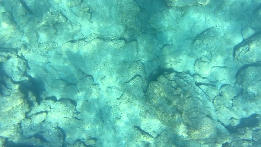 Top down underwater footage of rocks and stonesand light reflections on the bottom of the sea.   Shutterstock HD Video #17593738