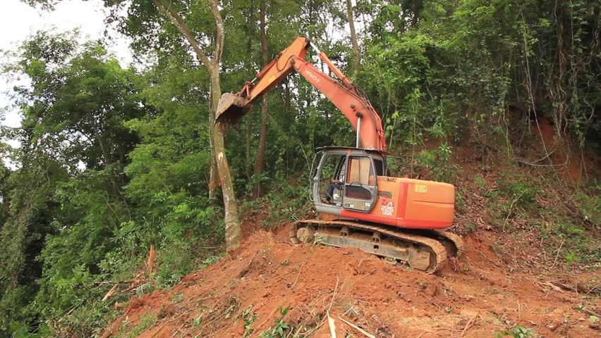 KOTA KINABALU, MALAYSIA - CIRCA JUNE 2016: Deforestation. Trees knocked down as Borneo rainforest destroyed to make way for palm oil industry.