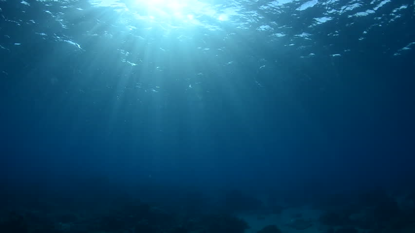 """Sunlight filtering through shallow water to create """"Gods Rays"""" in the water column, Komodo National Park, Indonesia 