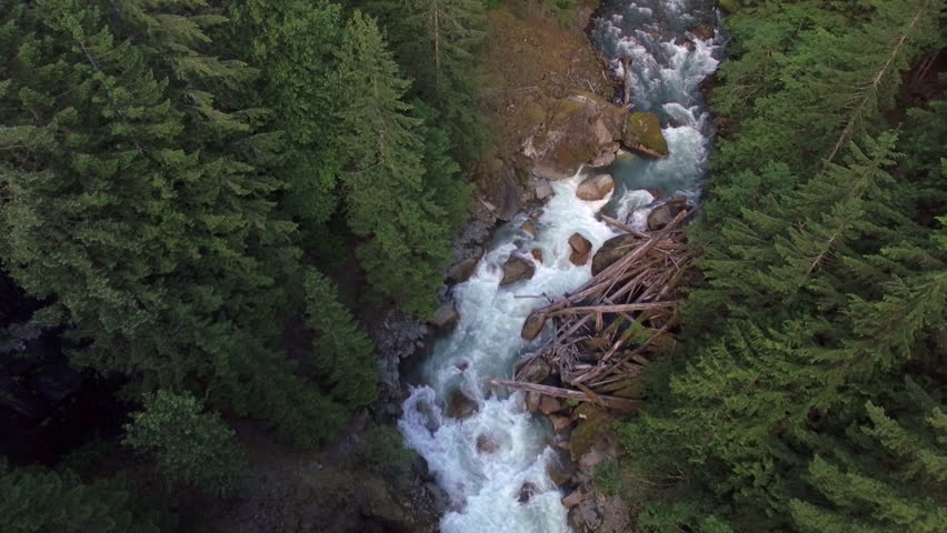 Helicopter View Flying Upstream of Raging Forest River #17693761