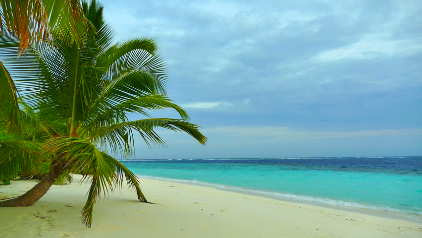 Beautiful tropical beach and sea in maldives island #17702050