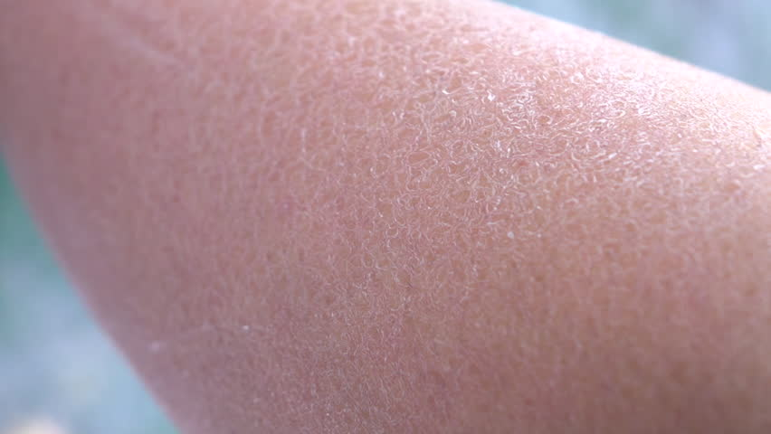 Close Up Dof Macro Dehydrated Stock Footage Video 100 Royalty Free 18001690 Shutterstock