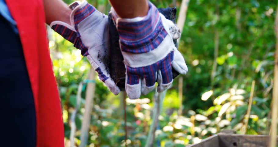 Gardener keeping plants in wooden crate at greenhouse 4k | Shutterstock HD Video #18334321